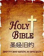 圣经英文版
