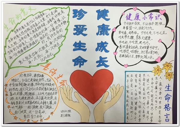 关于关爱的作文400_珍爱生命健康成长手抄报内容(4)_专题手抄报