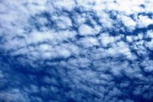 我是一朵云作文600字
