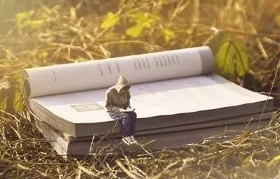 感受生活作文500字_书籍带我飞翔读书500字_抒情作文