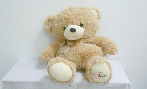 防爆玻璃日记500字_我心爱的玩具熊作文500字_状物作文
