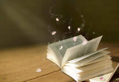 《生活的艺术》读后感600字